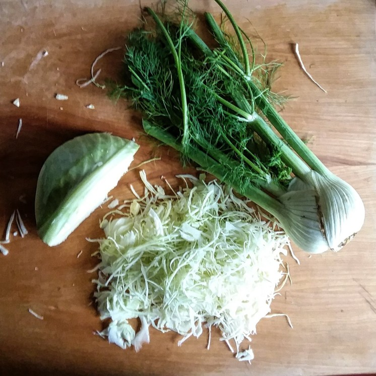 green cabbage and fennel kraut 1