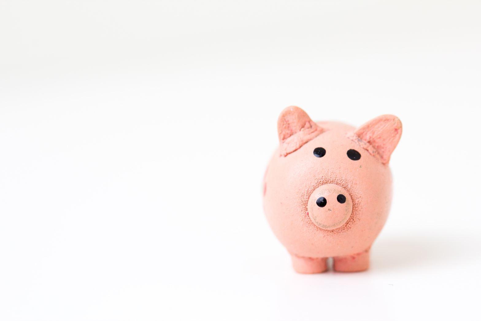 pink piggy bank shaped like a pig